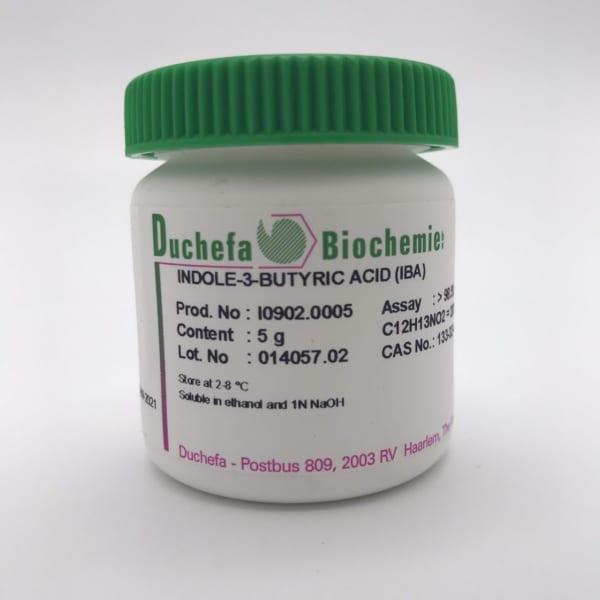 Indole-3-butyric acid(IBA)